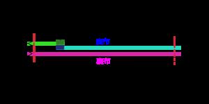 ip-m1-1